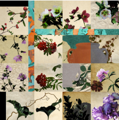 Stampa Collage Flowers